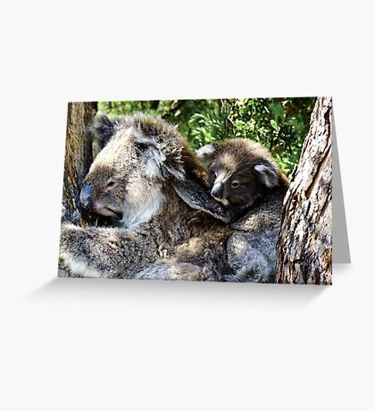 Holdin on to mum - Victoria Greeting Card