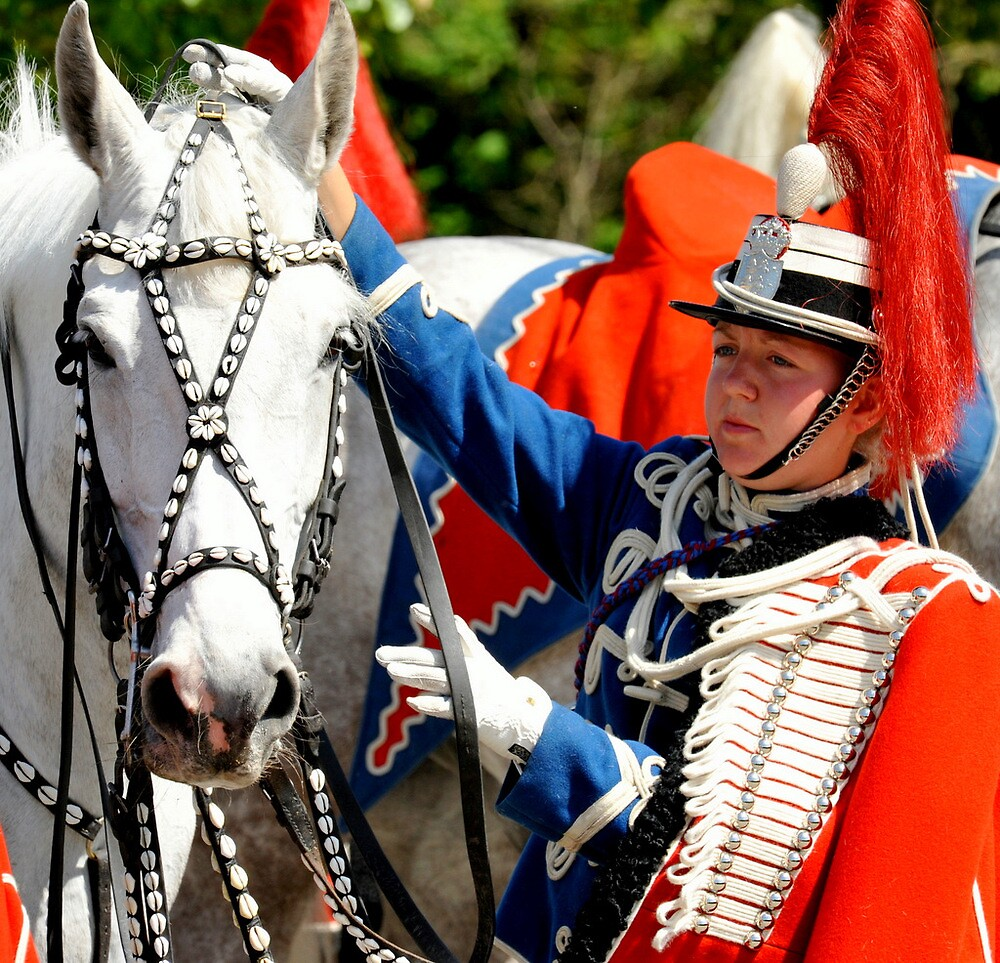 Horse and Hussar by Alan Mattison