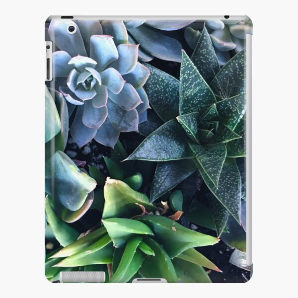 Contemporary, Sophisticated Succulents iPad Snap Case