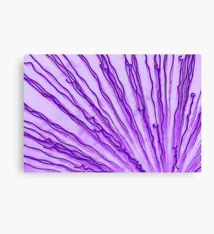 funkified fireworks Canvas Print