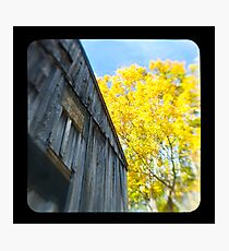 the old barn Photographic Print