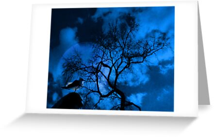 Moonbird by Mistyarts