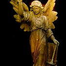 Angel in colour by thermosoflask