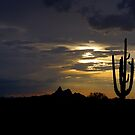 Picacho Silhouette by Cathy L. Gregg