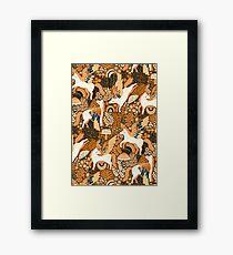 Cinnamon Pegasi  Framed Print