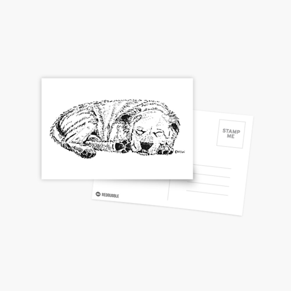 Let Sleeping Dogs Lie - Postcard Postcard