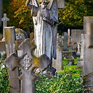 Cemetery Angel by Dave Hare