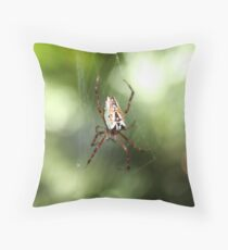 """""""Itsy Bitsy Spider"""" Throw Pillow"""