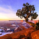Winter at Dead Horse by Chad Dutson