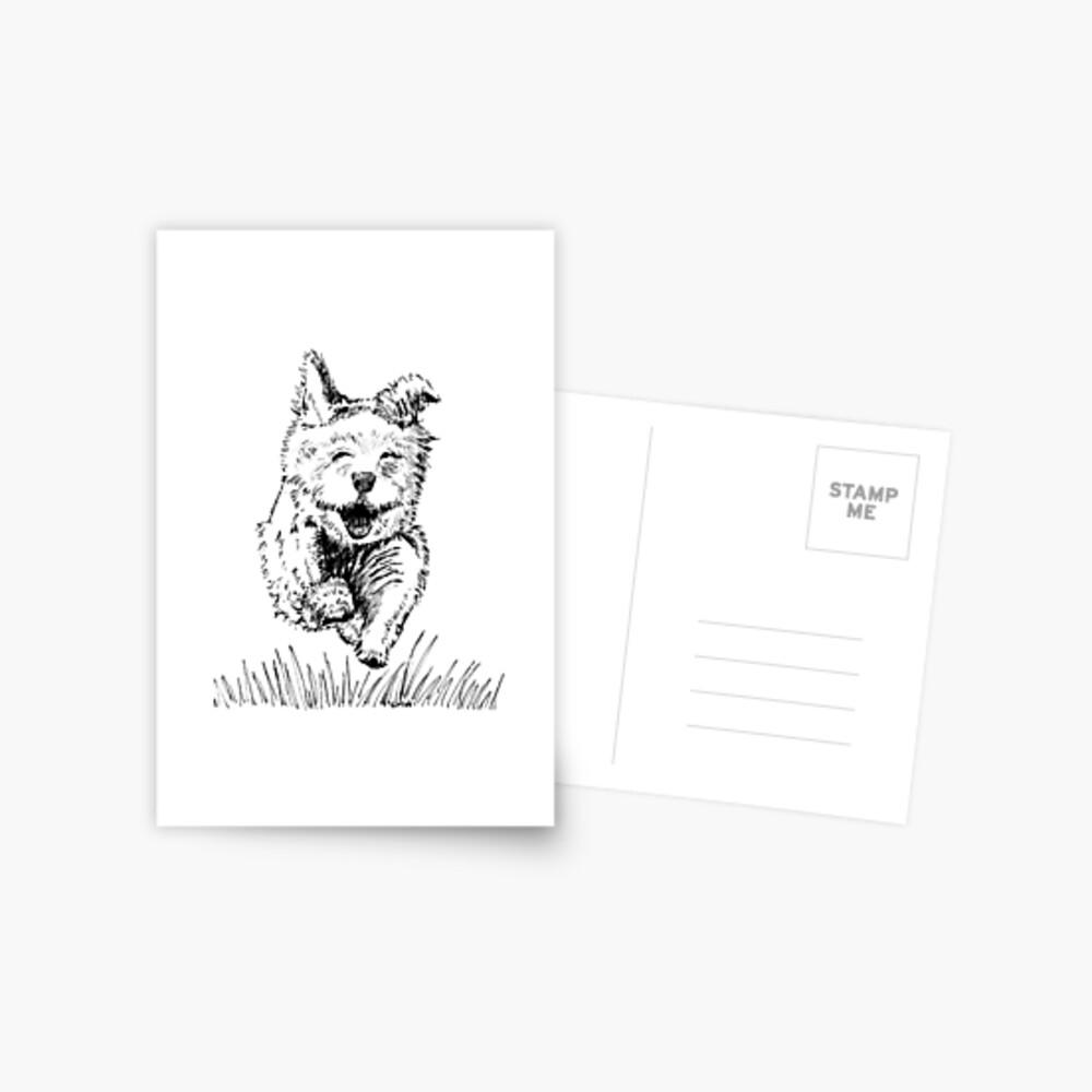 Follow your Nose - Postcard Postcard