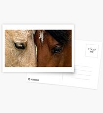 Face to Face Postcards