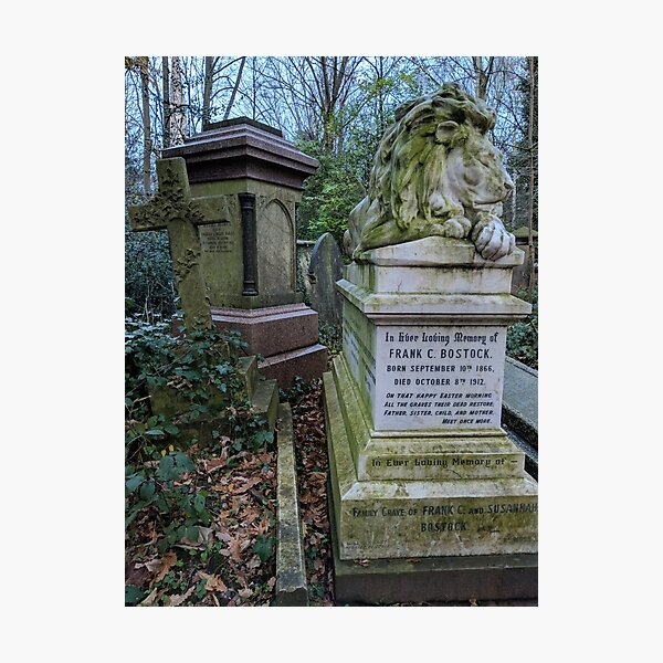 Sleeping Lion in Abney Park, Winter Photographic Print