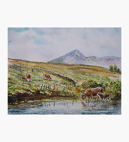 Croagh patrick viewed from Owenwee. Photographic Print