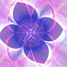 Apophysis nGon-Lotus Flower by judygal