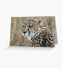 Regal Beauty Greeting Card