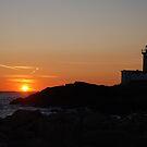 Eastern Point Sunset - Gloucester, Massachusetts by Steve Borichevsky