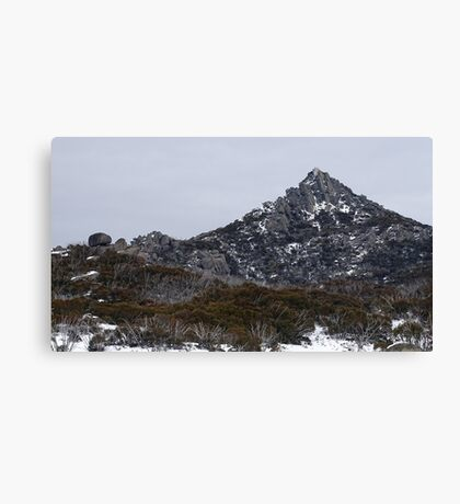 The Horn in the snow Canvas Print