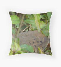 turtledove Throw Pillow