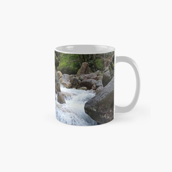 Stream and falls Classic Mug