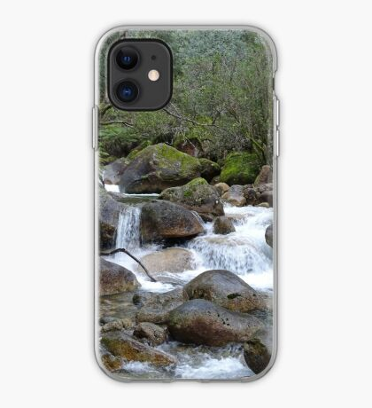 Stream and falls iPhone Case