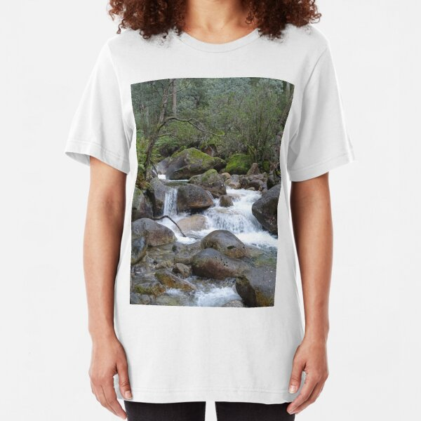 Stream and falls Slim Fit T-Shirt