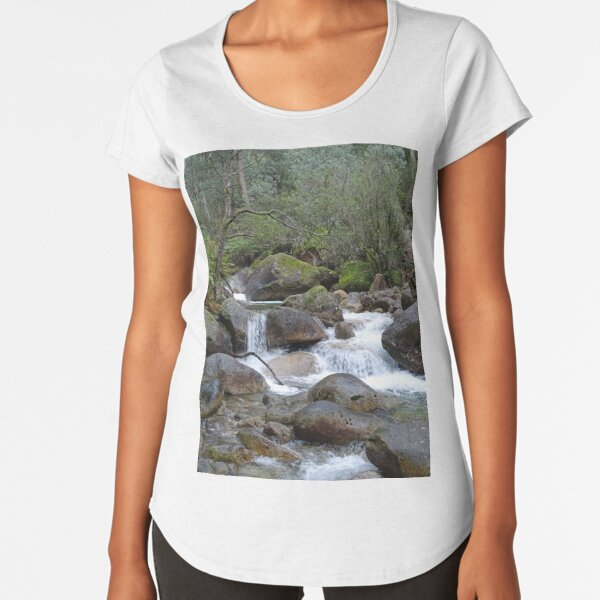 Stream and falls Premium Scoop T-Shirt
