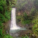 La Paz Waterfall by Cheryl  Lunde