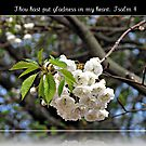 Thou hast put gladness in my heart: Psalm 4 by BlueMoonRose