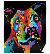 Staffordshire Bull Terrier Poster