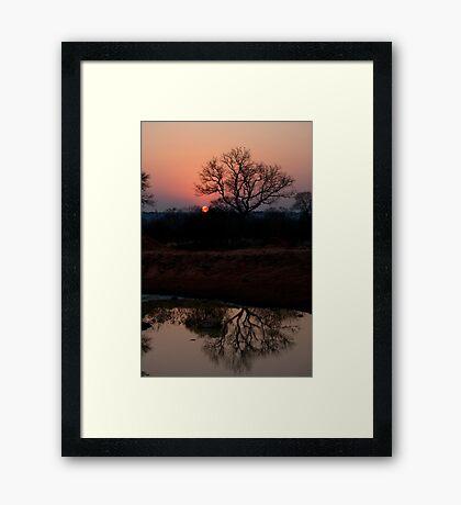 Lion Sands Sunset Framed Print