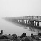 Morning Fog by JGetsinger