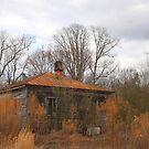 Shades Of Rust by JGetsinger