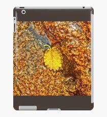 Premature Autumn Aspen Leaf iPad Case/Skin