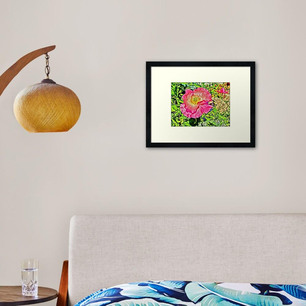 Flamboyant Pink Poppy Framed Art Print