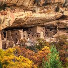 Fall Colors Under the Cliff Dwellings (Mesa Verde, Colorado) by Brendon Perkins