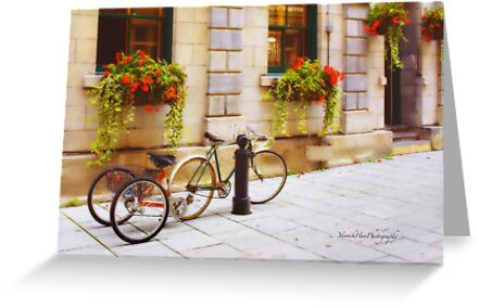 Tandem Bicycle and Flowers 2 by Yannik Hay