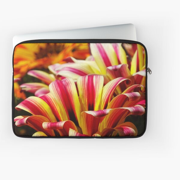 Gazania Laptop Sleeve