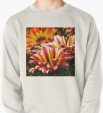 Gazania Pullover Sweatshirt