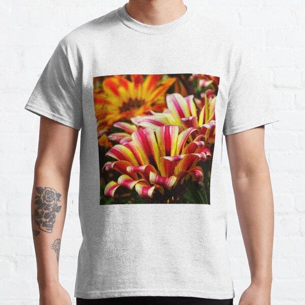 Gazania Classic T-Shirt