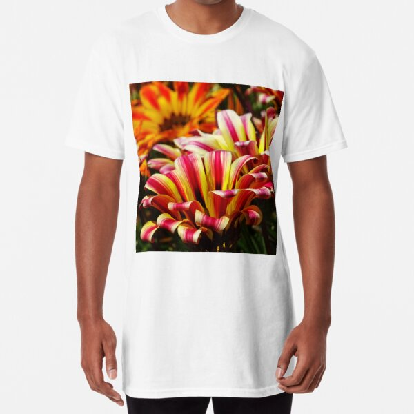 Gazania Long T-Shirt