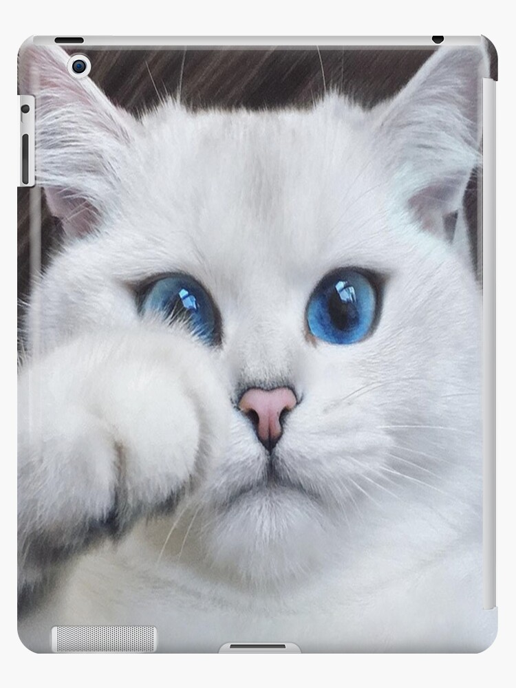 White Cat With Blue Eyes So Cute And Adorable Ipad Case Skin By Chantal15 Redbubble