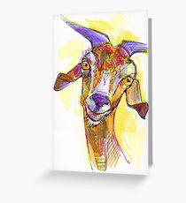 Goat drawing - 2011 Greeting Card
