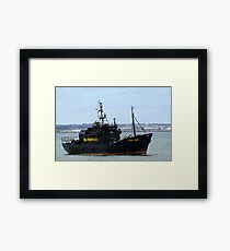 Sea Sheperd Framed Print