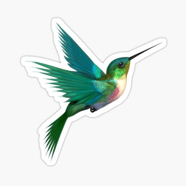 Colibri Sticker