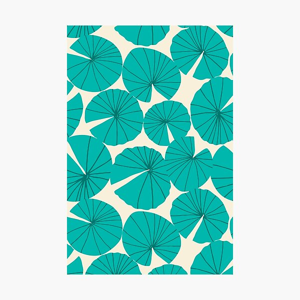 Lilypads Pond Waterlily Leaves in Teal Photographic Print