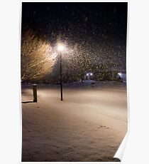 Peaceful Snowstorm Poster