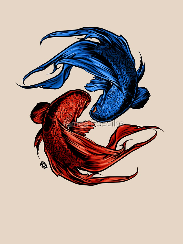Fighting Fish by MrFoz