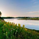 Wildflowers On Misty River by J Jennelle