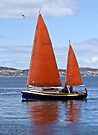 Tasmania Wooden Boat festival - Red Sails #2 by Odille Esmonde-Morgan