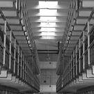 Lock Down by Lisa Baumeler